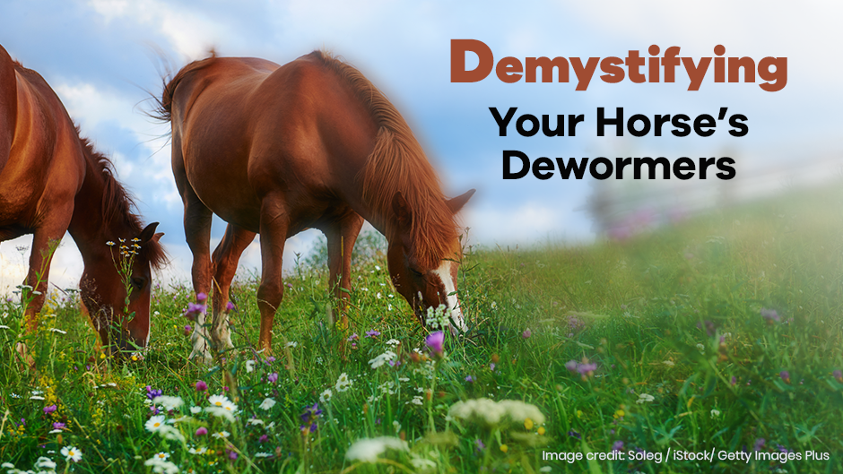 Your Horse's Dewormers